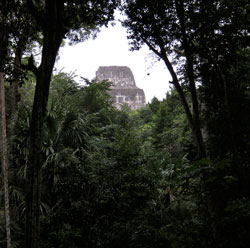 Our first sight of the ruins at Tikal.