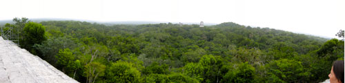 A panorama of our view from Temple IV.