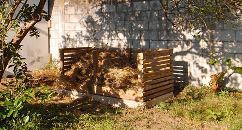 A compost bin we built at the GV office.