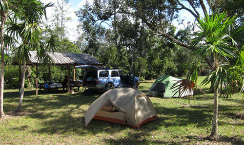 Our campsite near the Belize Zoo.