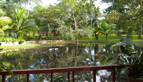 A shot of the pond at our campsite at Mayan Wells.