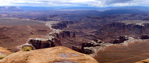 A panoramic view of Canyonlands National Park.