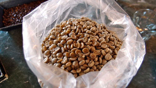 A bag of un-roasted raw coffee.
