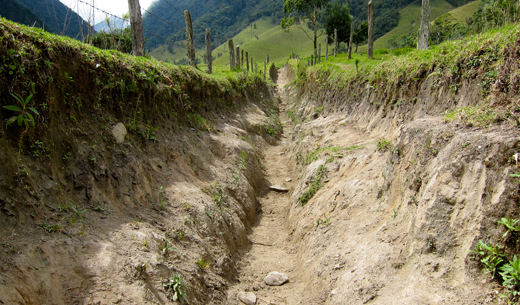 The dug-out trail we followed in Valle de Cocora.