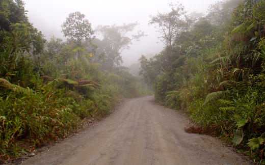 Driving through Sangay National Park in the clouds.