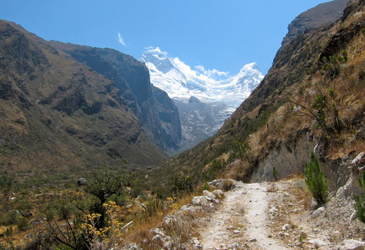 A view of a snow-capped mountain and trail in Llanganuco.