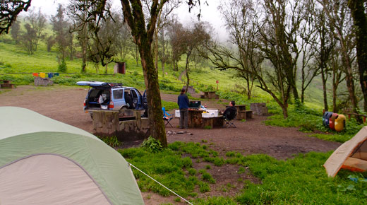 Our campsite at Lomas de Lachay.