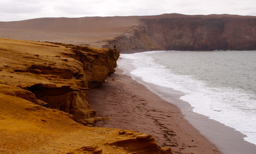 The view of the coastline from our campsite in Paracas.