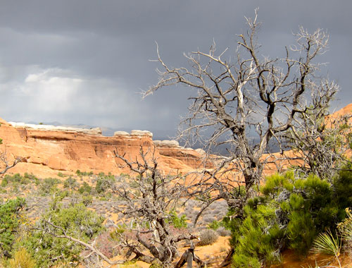 Rainclouds over Arches National Park.