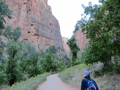 The beginning of the Narrows hike.